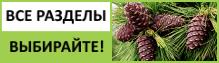 Компания Арго каталог продукции и товары
