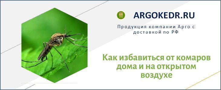 Как избавиться от комаров дома и на открытом воздухе