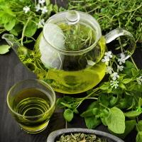 Натуральные чаи и сборы Арго