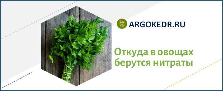 Откуда в овощах берутся нитраты