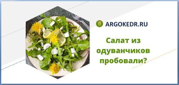 Салат из одуванчиков пробовали