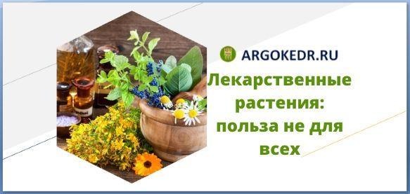 Лекарственные растения польза не для всех