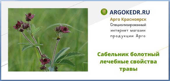 Сабельник болотный лечебные свойства травы